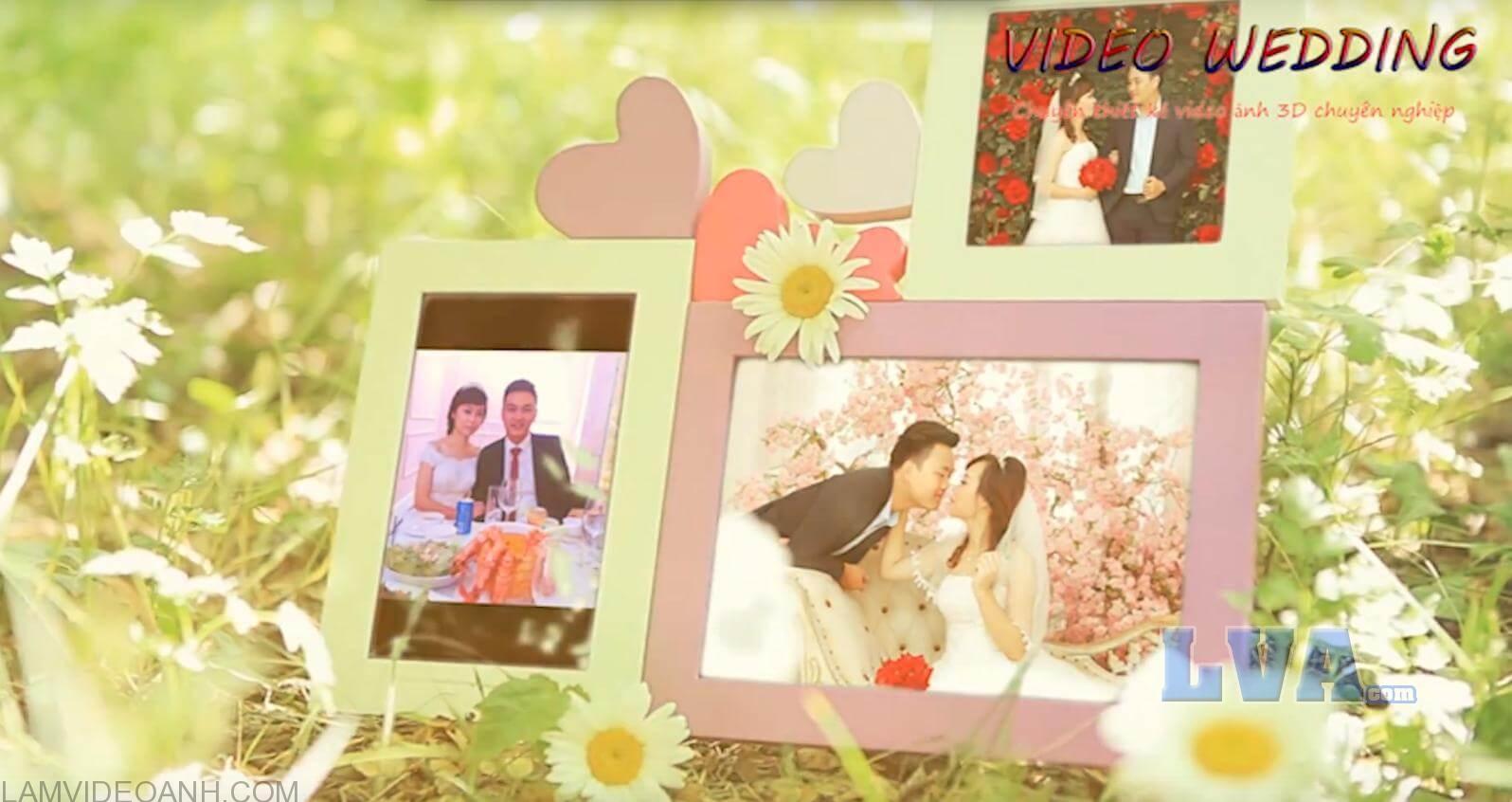 Video ảnh cưới 3D chân thực