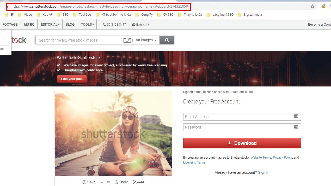 Tải ảnh trên Shutterstock